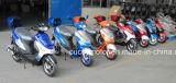 QualitätsClasisic bester Bewegungserwachsener Gas-Roller der Stadt-50cc/49cc Moto Motos (sonnig)
