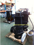 Vertical Sinkable Electric Sewage Toilets Pump with Guide Rail & Coupling Car