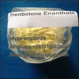 建物筋肉CASのためのステロイドの粉Trenbolone Enanthate: 10161-33-8