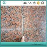 Comercio al por mayor de granito rojo/Maple Rojo/G562/baldosas pulidas losas/.
