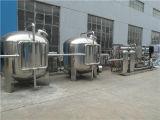 Entièrement automatique de traitement de l'eau par osmose inverse purificateur d'eau Usine de dessalement de l'eau