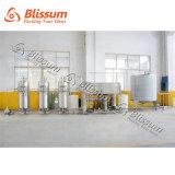 Système d'osmose d'inversion commercial de l'eau