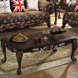 أريكة مع خشبيّة طاولة خزانة لأنّ يعيش غرفة أثاث لازم (532)