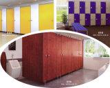 가구 화장실 분할을%s 가장 새로운 색깔 HPL 박층으로 이루어지는 장
