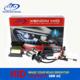 Fabrik-Fertigung-neues Produkt 12V 35W Bi-Xenon 6000k des Wechselstrom-dünnes VERSTECKTES Xenon-Installationssatz-H4