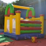 Bouncer gonfiabile del parco di divertimenti esterno (FC-030)