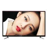 Télévision en couleur de vente chaude de TÉLÉVISEUR LCD de Digitals DEL TV