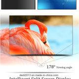 L'écran multi sans joint de 55 pouces Panel le mur de vidéo de TÉLÉVISEUR LCD