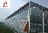 Venlo serres en verre avec système hydroponique