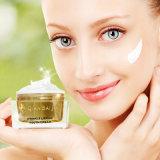 Melhor anti envelhecimento Qbeka Wrinkle Lifting Youth Creme Anti-rugas Creme