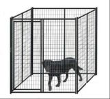 Jaula galvanizada del perro del acoplamiento soldado del acero los 6ftx5FT con la perrera de la azotea/del perro