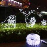 Kühles Weiß 150 Fuß 120V 2-drahtiger 1/2-Inch LED Seil-Licht-