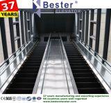 Tipo dell'interno scala mobile Pupular di trasporto pubblico in sottopassaggio, stazioni, aeroporti