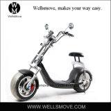 bici gorda eléctrica de la potencia de batería de litio del motor 1000W