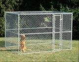 Jaula galvanizada al aire libre grande del perro del perro Kennel/6FT de la cerca de la conexión de cadena