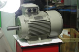 Y2 Ie1 Series Three Phase Asynchronous Motor 7.5kw 8p