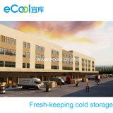 Grande volume de alta capacidade personalizados comida fresca de manter a armazenagem a frio