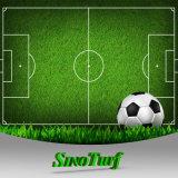 ラグビー、サッカー、スポーツのための40~60mmの競争価格の偽造品の草