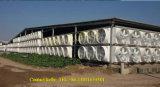 Ventilation Fibergladss FRP Absaugventilator des Kegel-1460mm für Geflügel/Gewächshaus/Lager