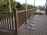 Pêche à la traîne en plastique en bois de la balustrade WPC de Composit WPC de pêche à la traîne de balustrade (LHMA060)