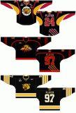 Casa dei gatti selvatici 2000-2011 principale di Moncton della Lega di Hockey di junior della Quebec e hokey di ghiaccio alternati personalizzati della strada Jersey