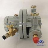 変化15L/Min一方通行Bml-5空気によって作動させるインク、接着剤の循環ポンプ