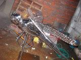 Insectes, Jardin extérieur, Décoration de piscine Décoration en acier inoxydable Sculpture