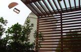Bois et composé en plastique et constructeur de plafonds de PVC en Chine