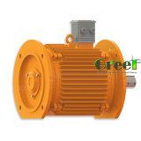 20kw 450rpm Magnetische Generator, AC van 3 Fase Permanente Magnetische Generator, het Gebruik van het Water van de Wind met Laag T/min