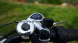 Hongdu /OEM 최신 판매 36V 250W Guewer 전기 자전거 여자, 도시 전기 자전거