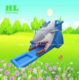 Faites glisser l'eau de requin Inflatable glissoire d'eau pour les enfants