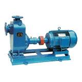 Elektrische Selbstgrundieren-Trinkwasser-Bewässerung-Pumpe