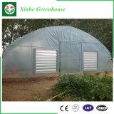 Парник тоннеля полиэтиленовой пленки пяди низкой стоимости одиночный аграрный