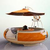 Elektrisches BBQ-Krapfen-Boot für Hafen-Tourismus