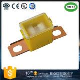 Auto Fusibles Fusible Composants Auto Fusibles Fusible Lien Petit Fusible Mini Fusible Micro Fuse