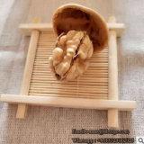 [شنس] جوزة مصنع رقيق جلد جوزة [سنكينغ] جوزة