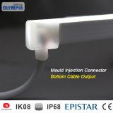 indicatore luminoso al neon bianco latteo della corda della flessione di 24V mini LED per la decorazione esterna