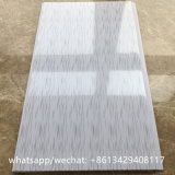 실내 장식을 인쇄하는 남아메리카 건축재료 PVC 천장판 나무
