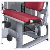 가정 체조 장비 /Body 자리가 주어진 다리 컬 (M5-1006)를 위한 강한 적당 장비