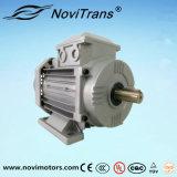 550W AC Motor síncrono con nivel de protección adicional para la seguridad prioridad a los usuarios (YFM-80)