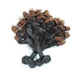 O cabelo humano do Virgin brasileiro de Ombre do cabelo do elemento do cabelo afrouxa a onda