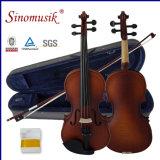 Violon du violon 4/4 d'instrument de musique avec la caisse de violon