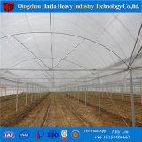 De LandbouwSerre Hidroponica van /Polycarbonate/Plastic van het Glas van Venlo