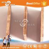 Brug, het Triplex van het Bamboe van het Hout van het Werk van de Vorm van de Spoorweg
