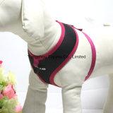 L'animale domestico copre i vestiti del cablaggio del cane (YD001-16)