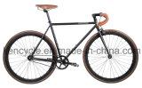 고품질 자전거 또는 고침 기어 자전거 Sy-Fx70016를 경주하는 단 하나 속도 형식