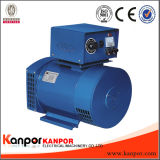 Kanpor AVR Double Bearing Fuan Fujian sans brossé Alternateur