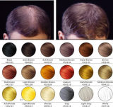 Fibre des cheveux pour fibre de cheveux à la kératine pour le traitement des cheveux