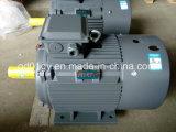 100% медной обмотки IEC трехфазного асинхронного электродвигателя