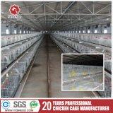 Tipo H de la capa de huevo pollo jaulas Equipo para avicultura Equipo